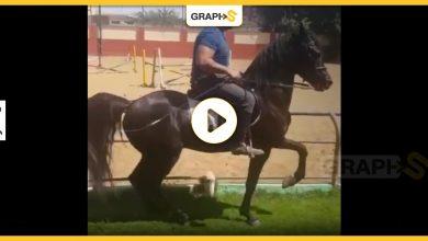 احمد سقا وحصانه