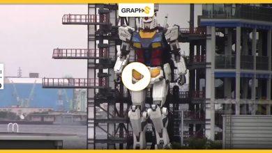 رجل آلي عملاق في اليابان