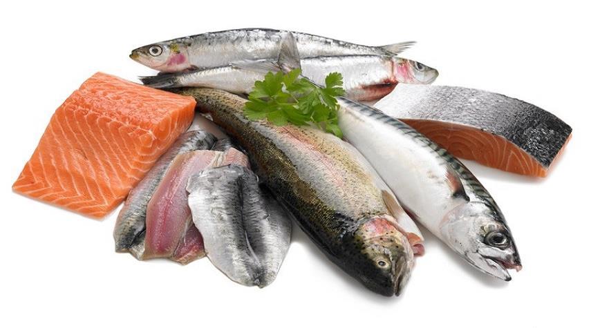 الاسماك الزيتية
