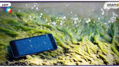 إنقاذ الهاتف بعد وقوعه في الماء