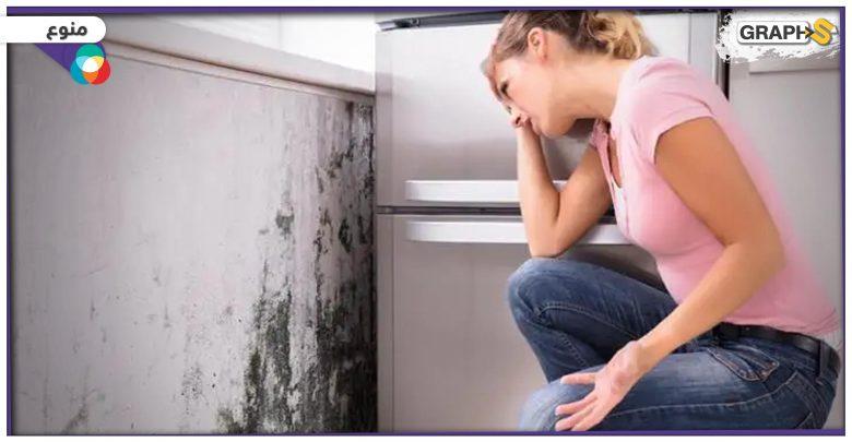 الرطوبة والعفن في المنزل