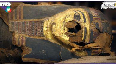 لعنة الفراعنة وحوادث مصر الحالية