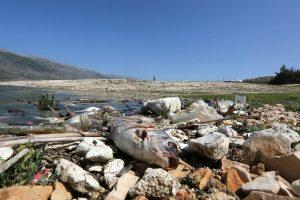 لبنان أمام كارثة بيئية