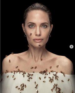 أنجلينا جولي مغطاة بالنحل