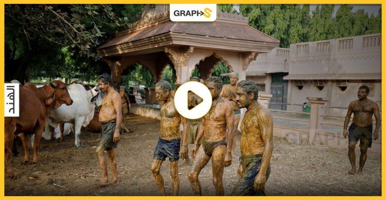 الاستحمام بروث البقر في الهند