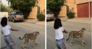 حيوان مفترس يتجول مع طفلة صغيرة