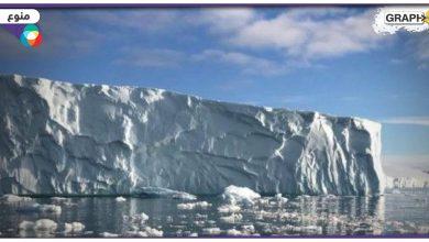 القطب الشمالي