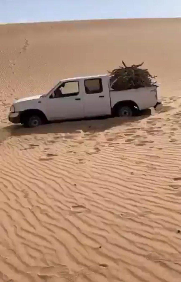 صحاري السعودية