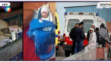 في مصر.. 5 عمال سقطوا داخل غلاية زيت ليحاولوا إنقاذ بعضهم فكانت النهاية مأساوية.. امرأة روسية تلقي برضيعة داخل حاوية قمامة - فيديو