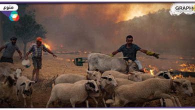 """""""أخبار العالم"""" حوض البحر المتوسط يشتعل مع موجة حر شديدة.. مقتل 15 شخص في النيجر.. انهيارات أرضية جديدة في الهند"""