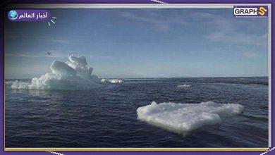 صفيحة الجليد في غرينلاند