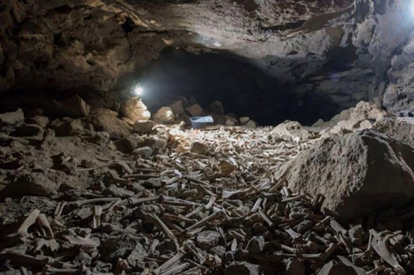 شاهد: اكتشافات غريبة داخل كهف تاريخي بأنابيب الحمم البركانية بالسعودية على مدى آلاف السنين