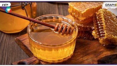 أهم 9 فوائد للعسل الطبيعي على الجسم وخبراء يصفونه بالمعجرة