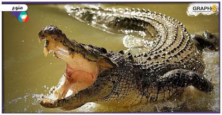 بوزنٍ بلغ أكثر من 700 كلغ.. اصطياد تمساح عملاق في دولة آسيوية بعدما شكل كابوساً لسكانها