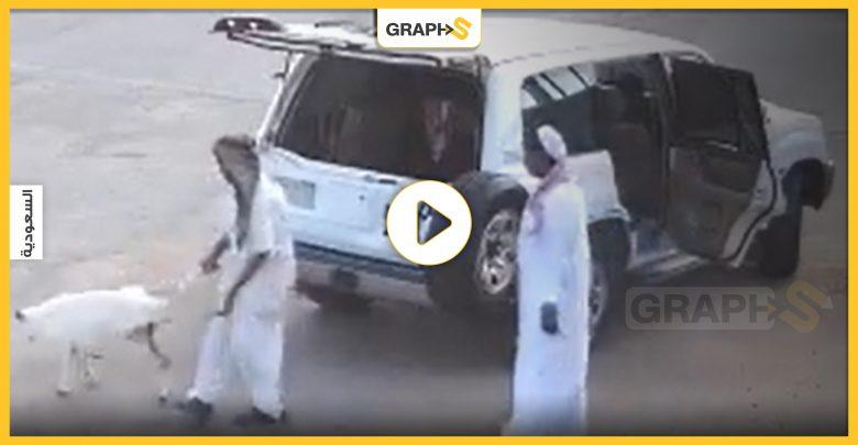 بالفيديو|| رجلان يسرقان وسط الشارع بوضح النهار في الرياض..اعتديا على صاحب الملكية وحاولا قتله