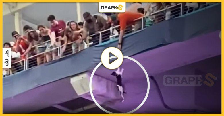 بالفيديو|| في أمريكا.. قطة معلقة في الهواء تحير ملعب كرة قدم