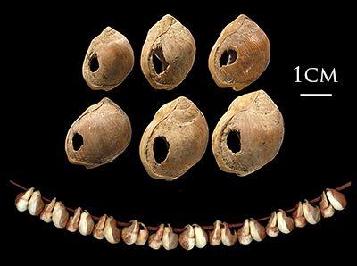 شاهد: اكتشاف أقدم مجوهرات في التاريخ.. وجدت في دولة عربية وعمرها تجاوز الـ 150 ألف عام