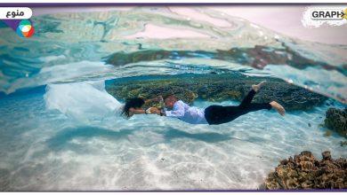 شاهد: زوجان سعوديان يحتفلان بزفافهما أسفل الماء في جزر المالديف