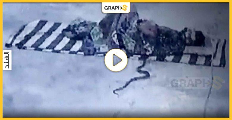 بالفيديو   أفعى كوبرا تداهم رجلاً نائماً داخل معبد هندي.. وردة فعله أثارت مواقع التواصل