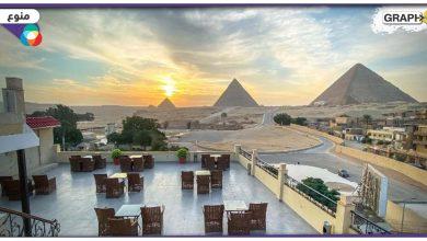 بالصور: في مصر.. استرداد تمثالين أثريين هامين تاريخياً من بلجيكا