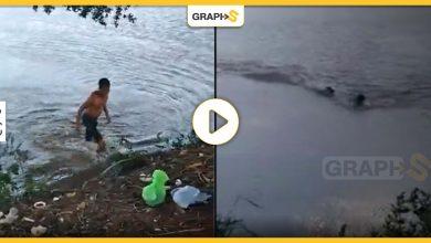 بالفيديو|| لحظة انقضاض تمساح على شاب يسبح في بحيرة بالبرازيل